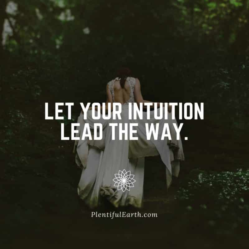 let your intuition lead the way quote