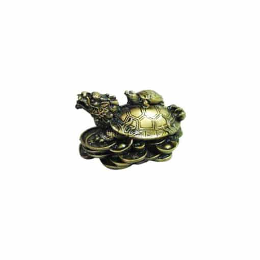 chinese money good fortune turtle