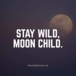 Stay Wild, Moon Child Quote
