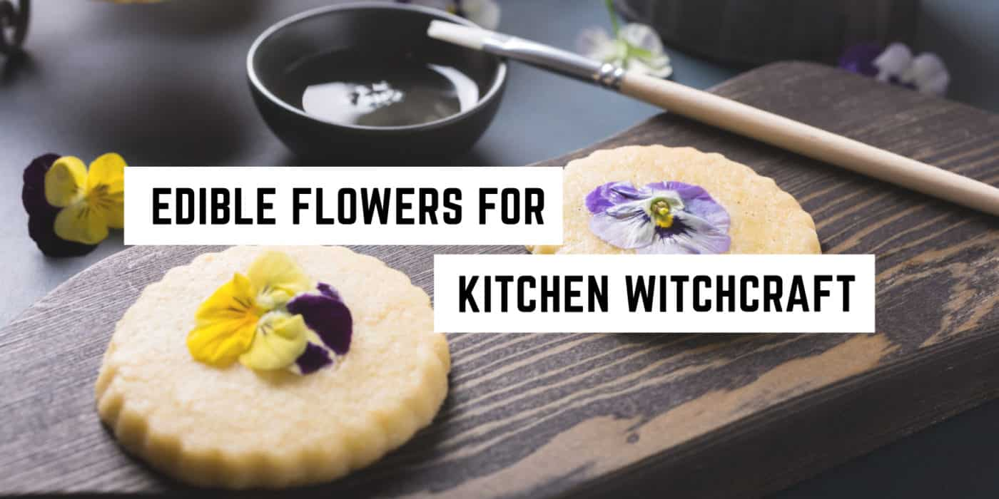edible-flowers-for-kitchen-witchcraft
