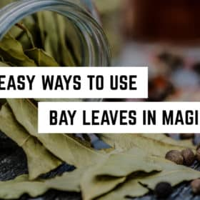 8-easy-Ways-to-Use-Bay-Leaves-in-Magick