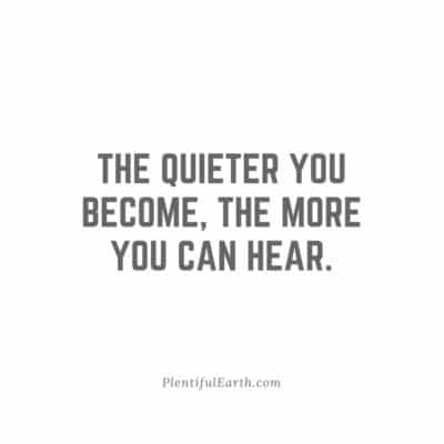 the quieter you become the more you can hear witchcraft tip