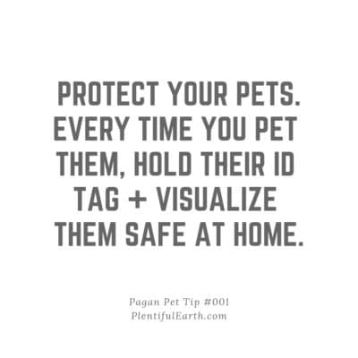 Witchy Pet Tip for Instagram Image: Protect your pets. Every time you pet them, hold their ID tag and visualize them safe at home.